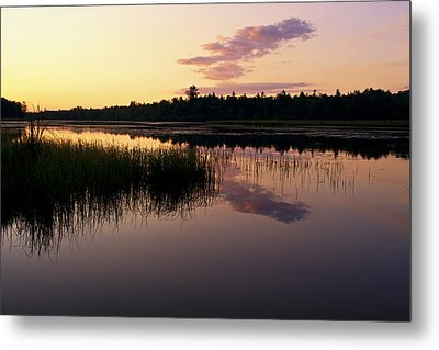 Metal Print featuring the photograph Colors Of The Dawn by Yelena Rozov