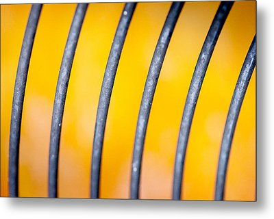 Common Misconception Metal Print by Gene Hilton