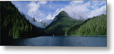 Conifer-covered Coastline Of Warm Metal Print by Konrad Wothe