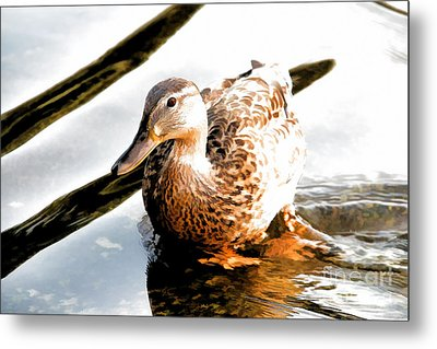 Contemplation Metal Print by Mariola Bitner