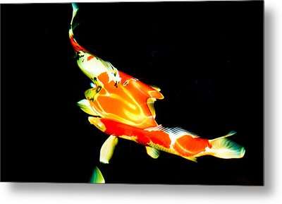 Contemporary Koi Photo Painting Metal Print
