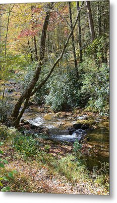 Metal Print featuring the photograph Cool Creek by Margaret Palmer