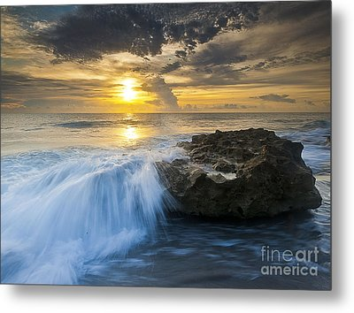 Coral Cove Metal Print by Bruce Bain