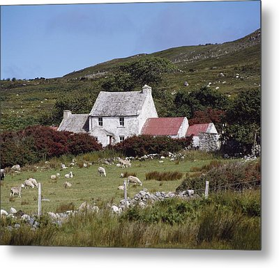 Cottage, Ireland Metal Print by The Irish Image Collection