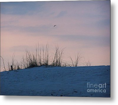 Cotton Candy Sky Metal Print by Jeanne Forsythe