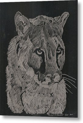 Cougar Metal Print by Robert Clement