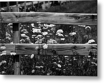 Country Flowers In Black And White Metal Print