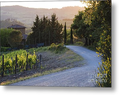 Country Road At Sunset Metal Print by Jeremy Woodhouse