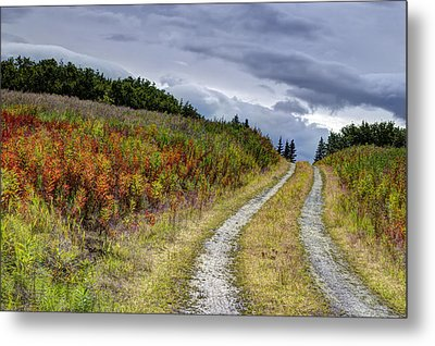 Metal Print featuring the photograph Country Road In Fall by Michele Cornelius