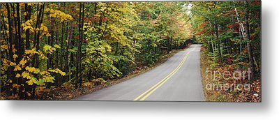 Country Road Through Maine Forest Metal Print