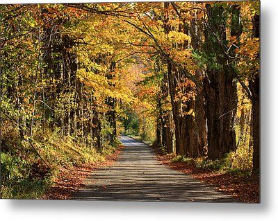 Country Roads In Autumn Metal Print