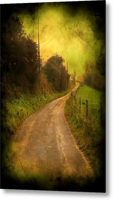 Countryside Road Metal Print by Svetlana Sewell