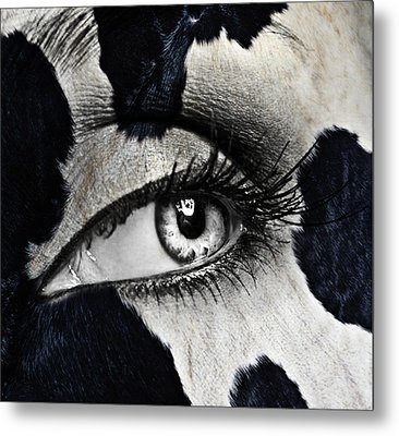 Cow Metal Print by Yosi Cupano