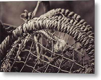 Metal Print featuring the photograph Crab Cage by Justin Albrecht