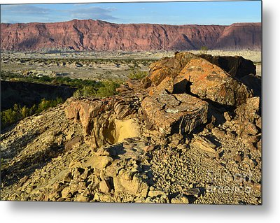 Cracked Stone Metal Print by Juan Stang