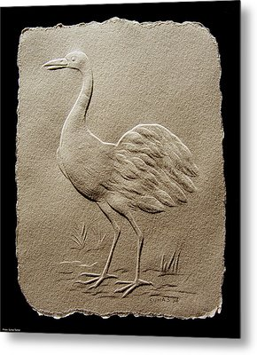 Crane Bird Metal Print by Suhas Tavkar