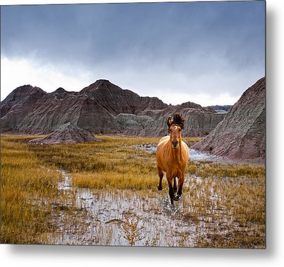 Crazy Horse Metal Print by Ron  McGinnis