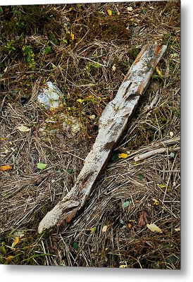 Creek Driftwood Metal Print by Ron St Jean