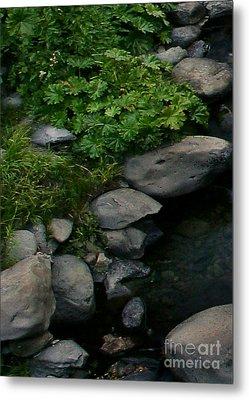 Creek Flow Panel 2 Metal Print by Peter Piatt