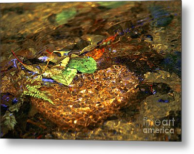 Creekside Metal Print by Sharon Talson