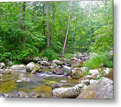 Metal Print featuring the photograph Crooked Creek by Eve Spring