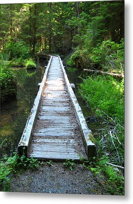 Metal Print featuring the photograph Crossing Over by Kathy Bassett