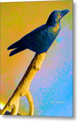 Crow At Rest Metal Print