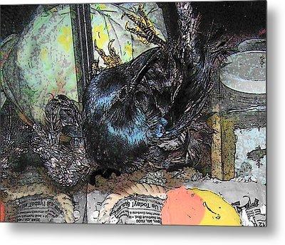 Metal Print featuring the mixed media Crow Rehab by YoMamaBird Rhonda