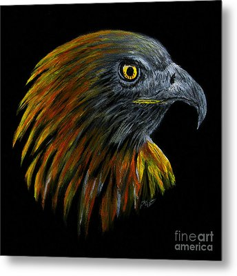 Crowhawk Metal Print by Peter Piatt