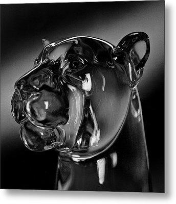 Crystal Cougar Head IIi Metal Print by David Patterson