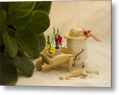 Cultivating Confection Metal Print by Heather Applegate