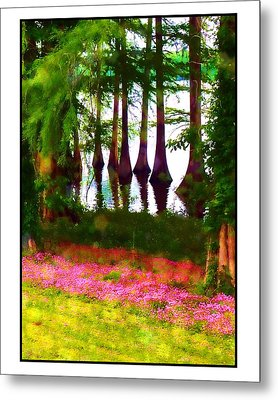 Metal Print featuring the photograph Cypress With Oxalis by Judi Bagwell