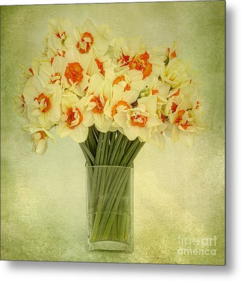 Daffodils In A Glass Vase Metal Print by Ann Garrett