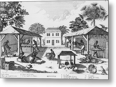 Daily Life For Enslaved Africans Metal Print by Everett