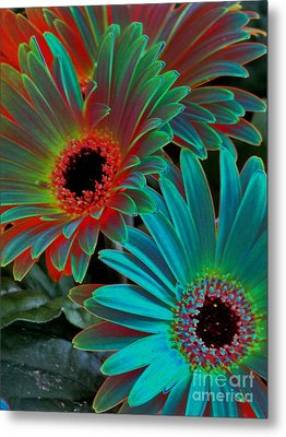 Daisies From Another Dimension Metal Print by Rory Sagner
