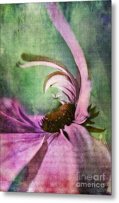 Daisy Fun - A01v042t05 Metal Print by Variance Collections