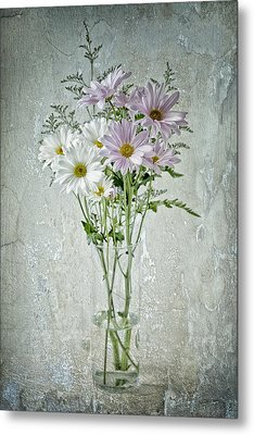 Metal Print featuring the photograph Daisy by James Bethanis