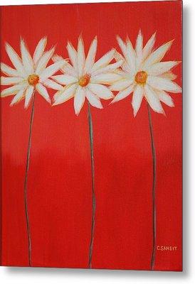 Daisy Trio - Red Metal Print by Cheryl Sameit