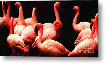 Dancing Flamingos Metal Print by Wingsdomain Art and Photography