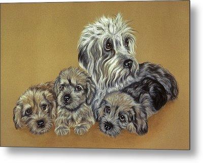 Dandie Dinmont Terriers Metal Print by Patricia Ivy
