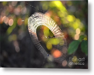 Dappled Web Of Deceit Metal Print by Maria Urso
