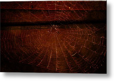 Metal Print featuring the photograph Dark Web by Robin Dickinson