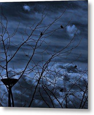 Darkblue Metal Print by Amr Miqdadi