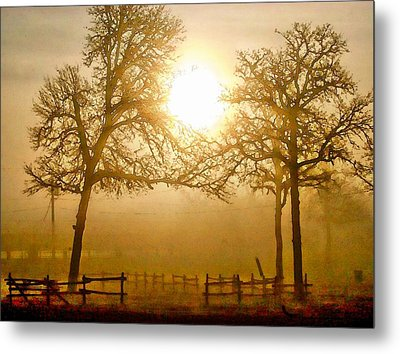 Dawn In The Country Metal Print by Carrie OBrien Sibley