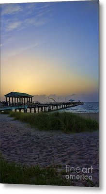 Dawn Is The Time Metal Print by Anne Rodkin
