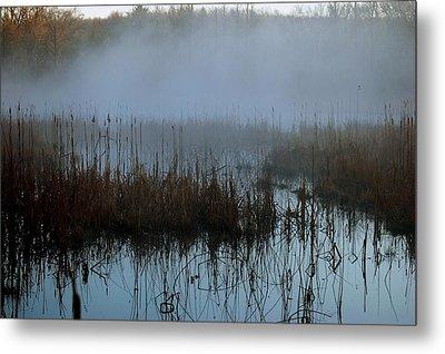 Daybreak Marsh Metal Print