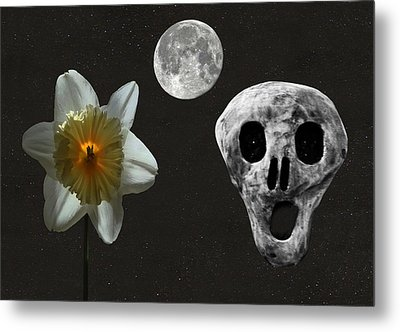 Death And The Daffodil  Metal Print by Eric Kempson