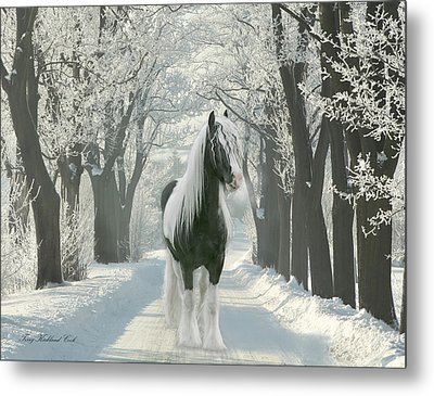 December Morning Metal Print by Terry Kirkland Cook