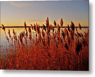 December Sunrise ... Metal Print by Juergen Weiss