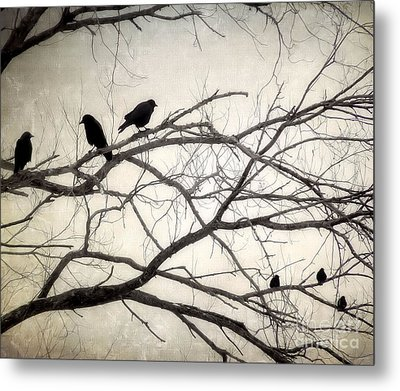Decree At Sunset Metal Print by Angie Rea